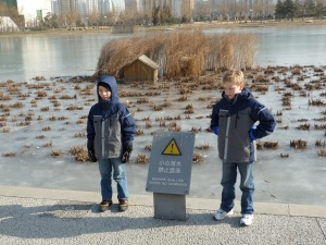 Don't swim in the ice!